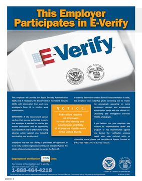 Picture of E-Verify English Poster