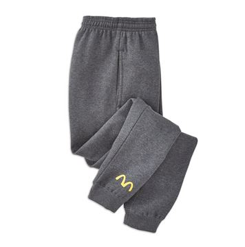 Picture of Mens' Grey Arches Joggers